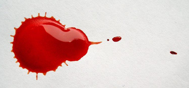 """Blut – ein """"flüssiges Organ""""!"""